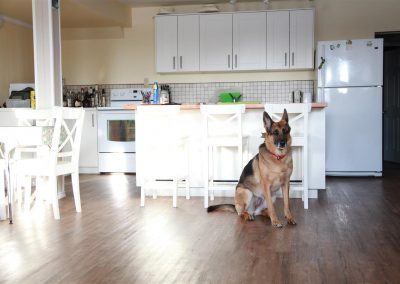 New kitchen – Tessa approved.